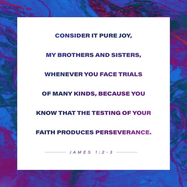 James 1:2-3 NIV