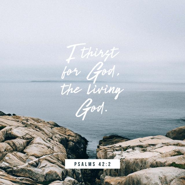 Psalms 42:2 NLT