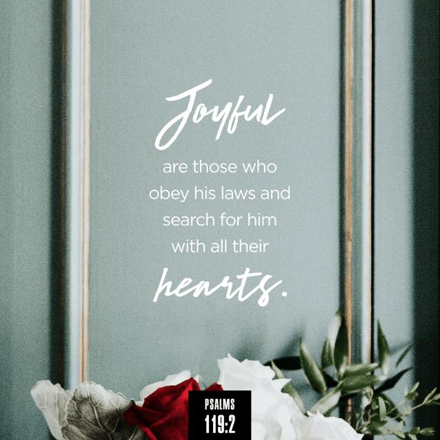 Psalms 119:2 NLT