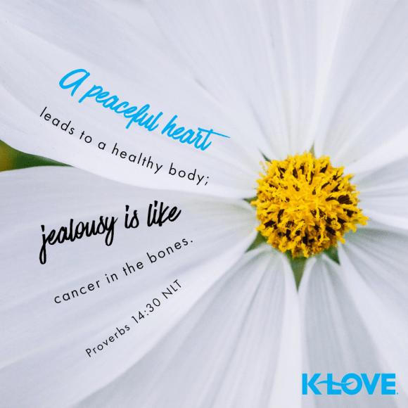 Proverbs 14:30 (NLT)