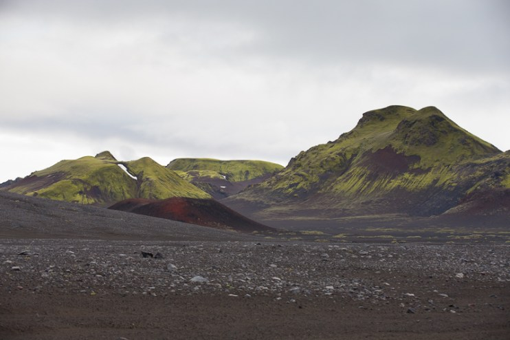 Iceland Trout TMD June 2014 FB-789