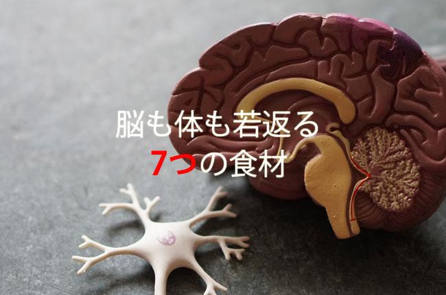 脳も体も若返る7つの食材をご紹介