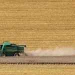 <span class='p-name'>How does Machine Learning fit into Agricultural Economics?</span>