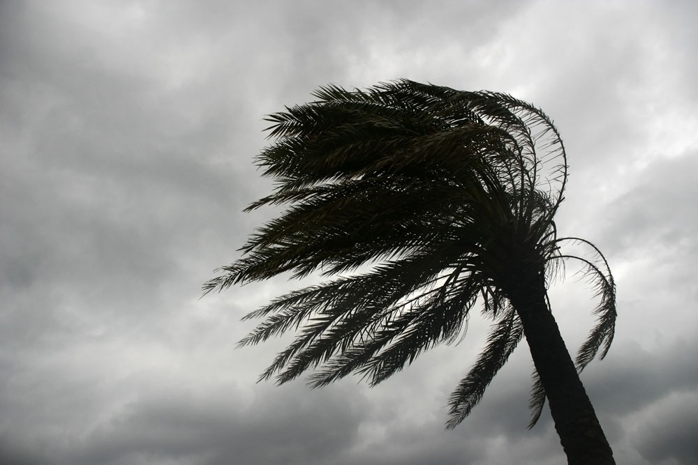 Creating an Emergency Preparedness Plan for Hurricanes and Catastrophic Events