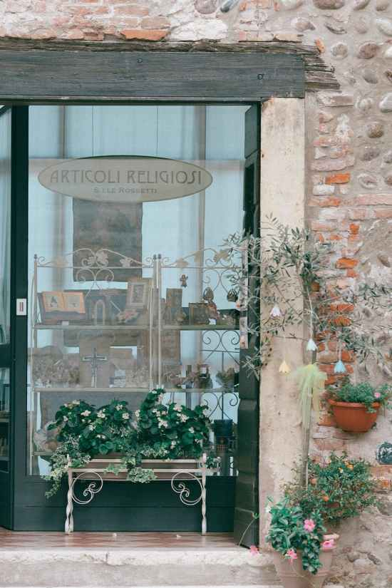 shop window decorated with plants