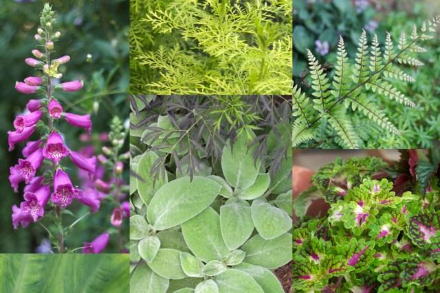 Kate Spain Garden Colors