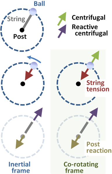 Illustration of Centrifugal Force, via Wikipedia Commons
