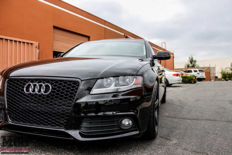Audi_B8_A4_RS_Grille_Eibach_Springs-5