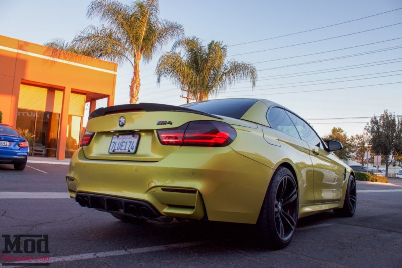 F83_BMW_M4_Evolution_Racewerks_Chargepipes_Injen_Intake-14