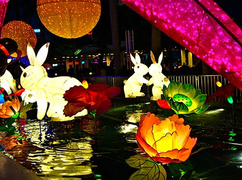 Bunny lanterns and water lilies in Tsim Sha Tsui .