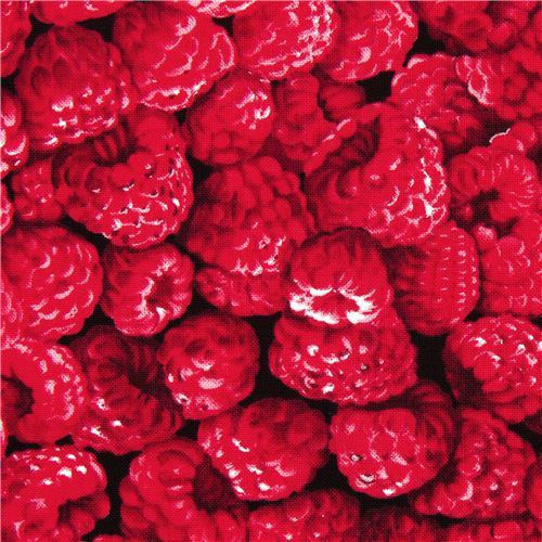 Raspberry fabric by Timeless Treasures from the USA