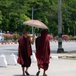 50 Tage in Yangon: Mönche in der Stadt