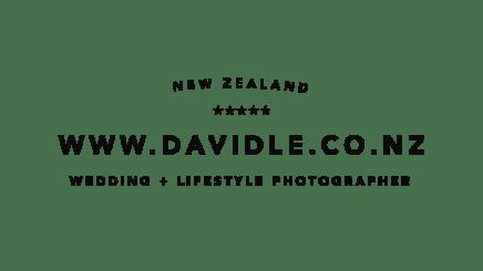 David-Le-Logo-2017_noborder