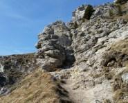 Über Stock und Stein auf den Nockstein (4 km, 260 hm)