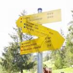 Giessenbachklamm003