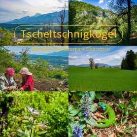 Tscheltschnigkogel (Kadischen) – Villach Warmbad