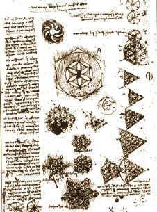 Dessin Fleur de Vie de Léonard de Vinci