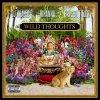 【解説・和訳】Wild Thoughts / DJキャレド ft. リアーナ & ブライソン・ティラー