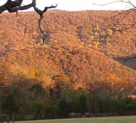 Alpenglow on the Massanutten Mountains near Edinburg, VA.