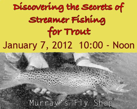 Learn to fly fish workshop: Discover the Secrets of Streamer Fishing for Trout