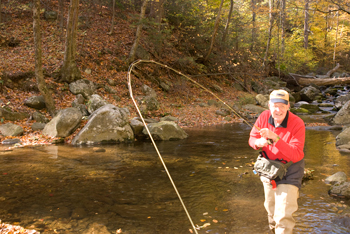 fly fishing trout, trout fly fishing