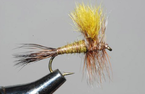 Mr. Rapidan Dry Fly