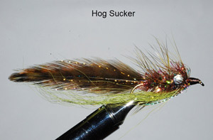 Murray's Magnum Hog Sucker Streamer