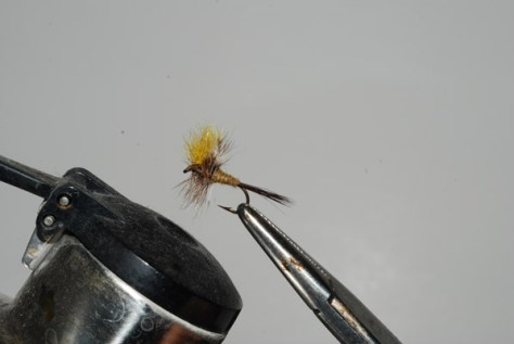 Dry flies that have become mashed or dirty can be brought back to excellent condition by steaming them very carefully over a hot tea kettle with long forceps... very , very carefully.