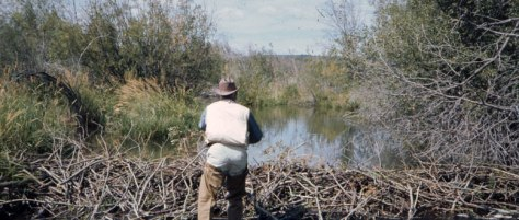Fly Fishing Tips--Charlie Waterman fishing a beaver dam
