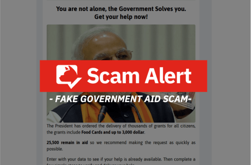 fake government aid scam