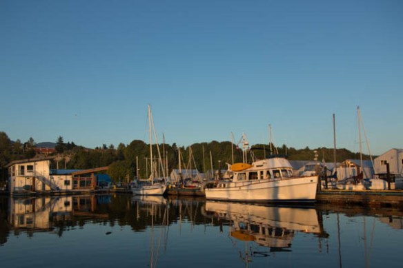 mv Archimedes morning at the Ladysmitih Maritime Society Guest Dock