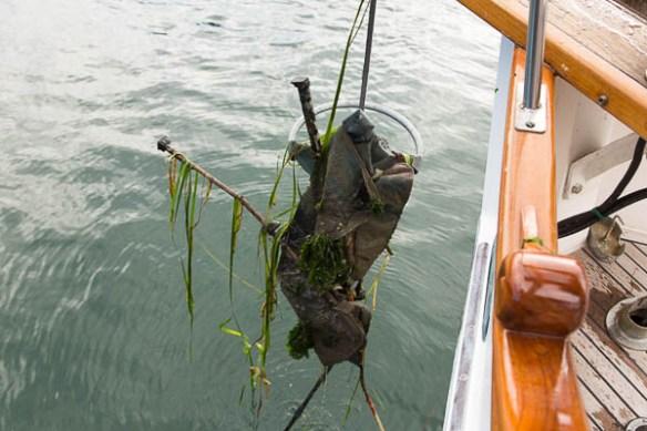 mv Archimedes anchor catch