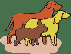 Jeder Hund ist unterschiedlich und individuell.