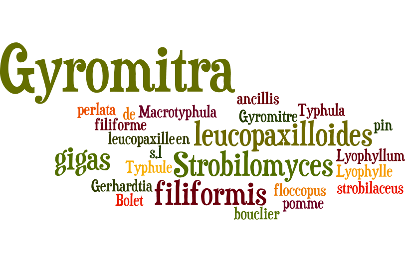 Nom de champignons (mai 2015)