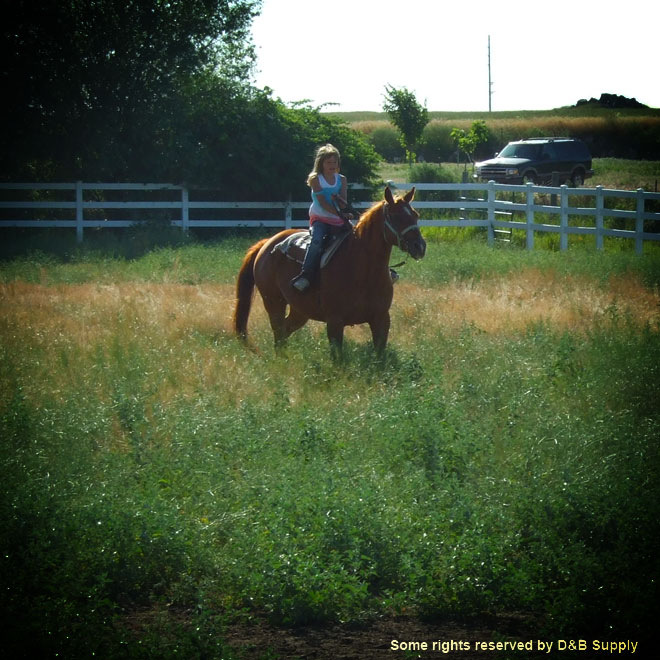 Kyla riding her horse in a pasture