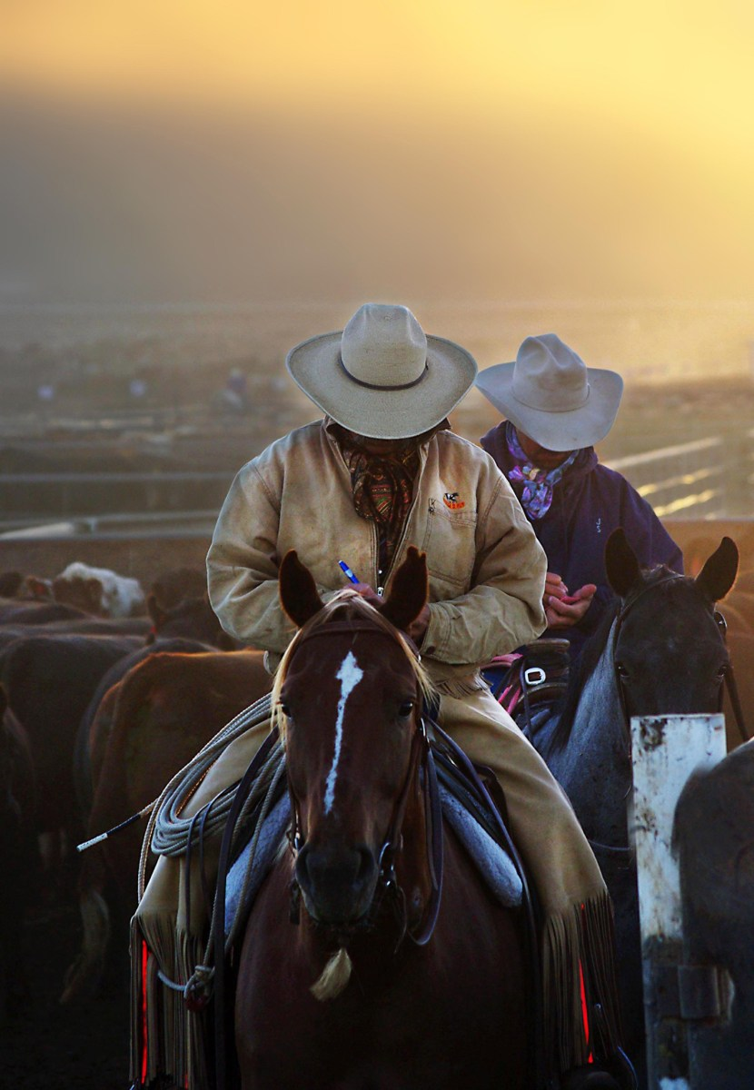 Two Cowboys on horses