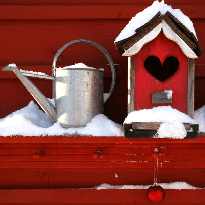 Gardening tools in the snow