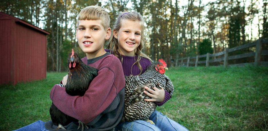 Two kids with chickens