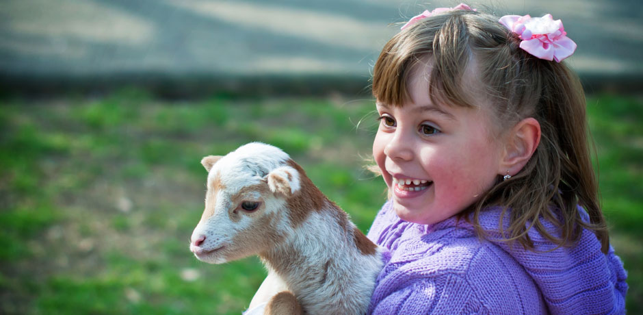Little girl and a lamb