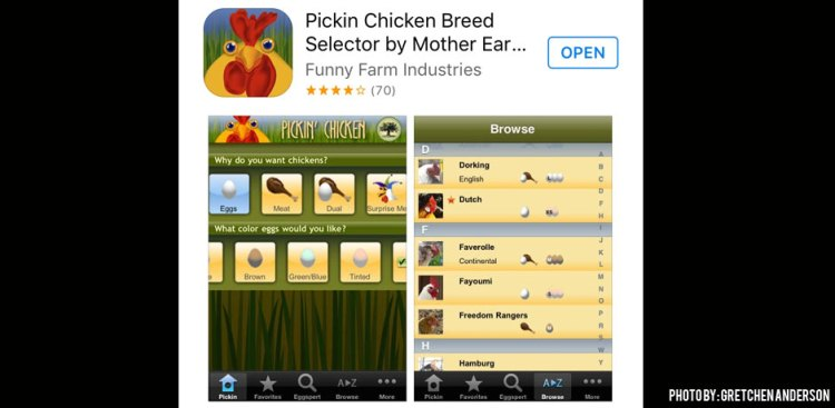 03012016_Pickin-Chicken-App