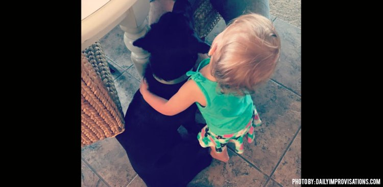 12122017_Boomerang-puppy-survival_puppy-being-hugged-by-toddler
