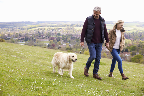 Couple walking in the country with a dog