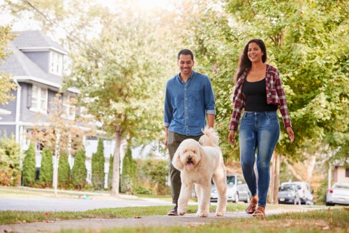 couple walking dog on suburban street