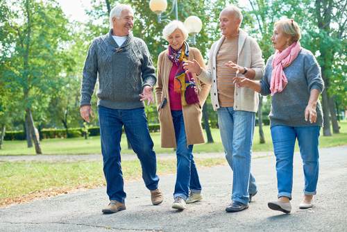 Active seniors walking together in the park