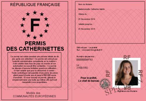 permis de conduire pour catherinette