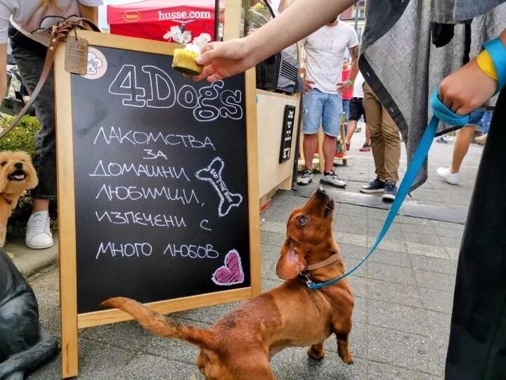 Пекарната за кучета на Адриана
