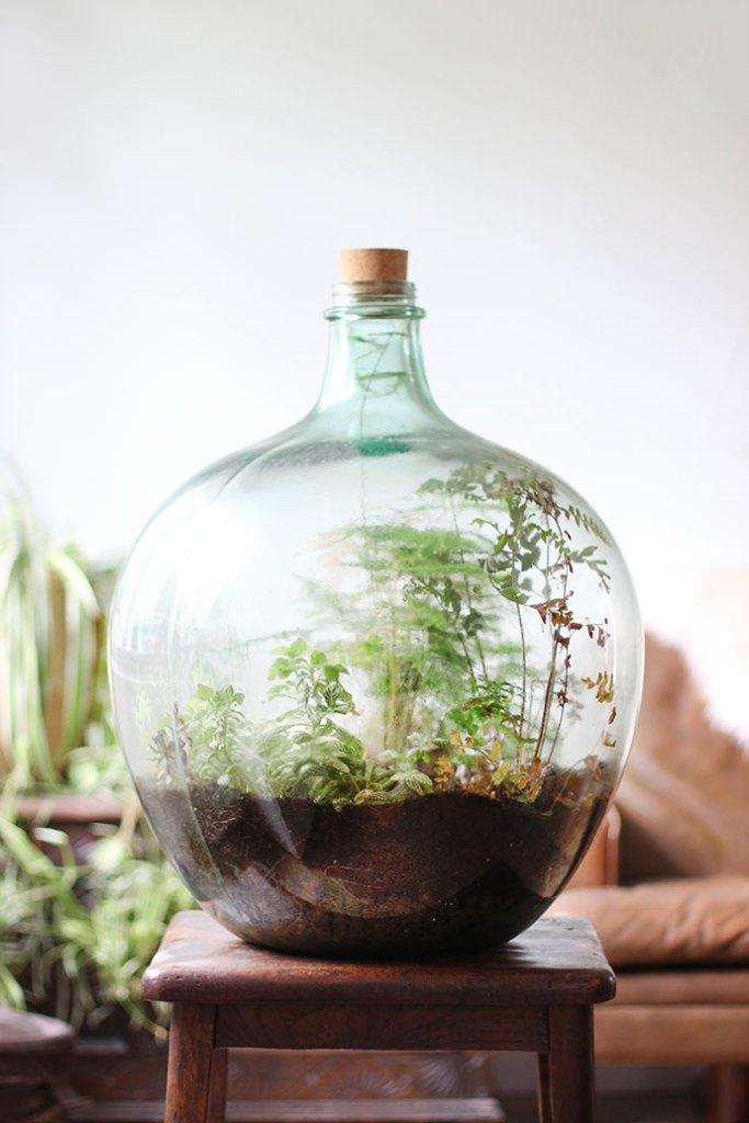 Steps To Build Your Glass Terrarium, Large Glass Terrarium Jars