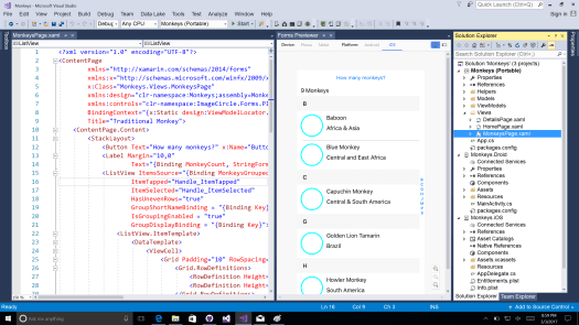 XAML Previewer