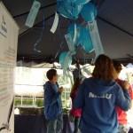 Foto: Monika Kröber - NABU Ballons schweben im Pavillon