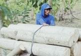 Konsep Dasar Ekonomi Islam Di Indonesia